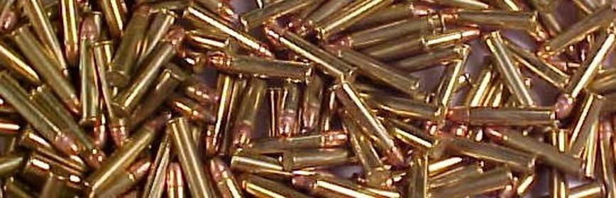 Munición Metálica Rifle Magnum