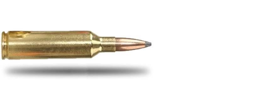 Munición Calibre .270WSM - Armería Online